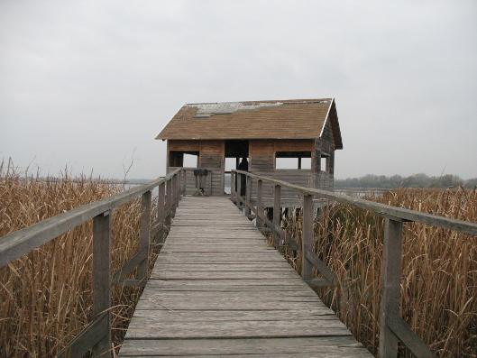 jezioro Cisa